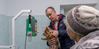 В Приднестровье появился рентген для животных