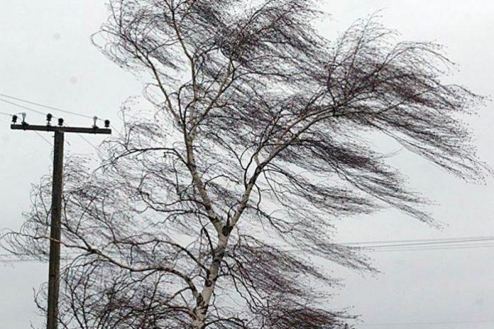Штормовое предупреждение объявлено в Приднестровье