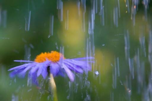 кратковременный дождь