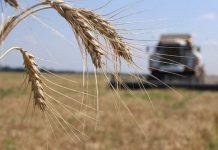 Меры поддержки аграриев приняты парламентом в окончательном чтении