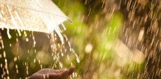 Штормовое предупреждение: дождь