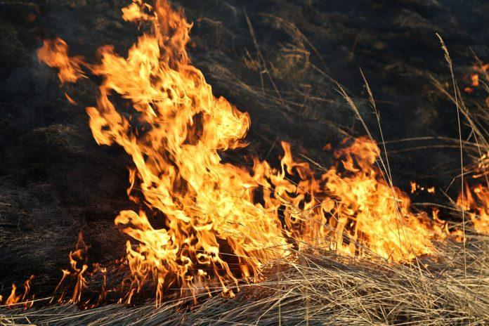 Жительница села Выхватинцы получила ожоги III степени, когда сжигала вещи в овраге