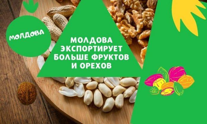 Молдова экспортирует больше фруктов и орехов