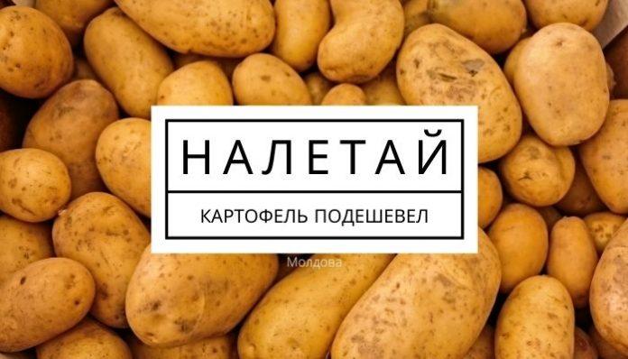 В Молдове подешевел картофель