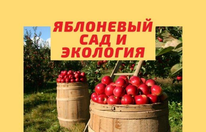 Яблоневый сад и экология