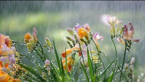 В субботу ожидаются дожди с грозами