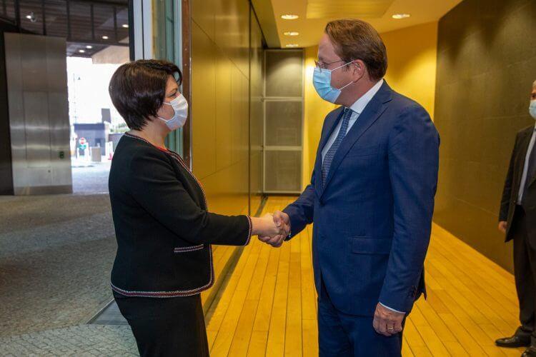 Наталья Гаврилини с комиссаром ЕС Оливером Варгели